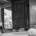 Photos: 山門にて待つ