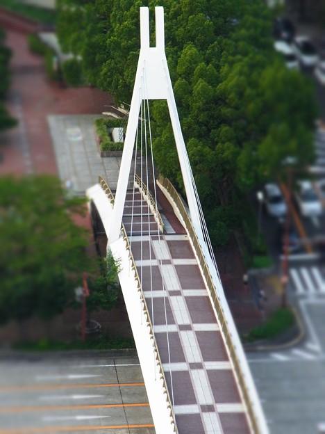 Photos: おもちゃの橋(爆)