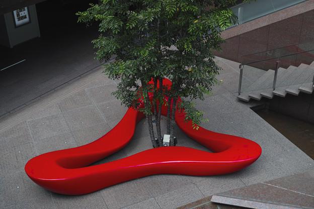 唇から樹が生えてた(爆)