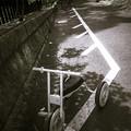 白い三輪車