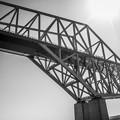 写真: 恐竜橋を海上から見る6