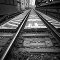 Photos: 線路の上にみえる
