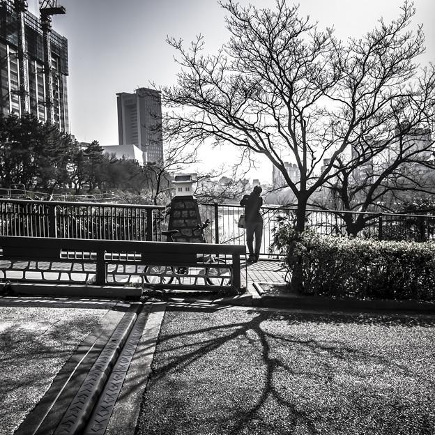 Photos: 飯田橋のお堀の上で