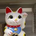Photos: 無愛想な@左手挙げ招き猫11