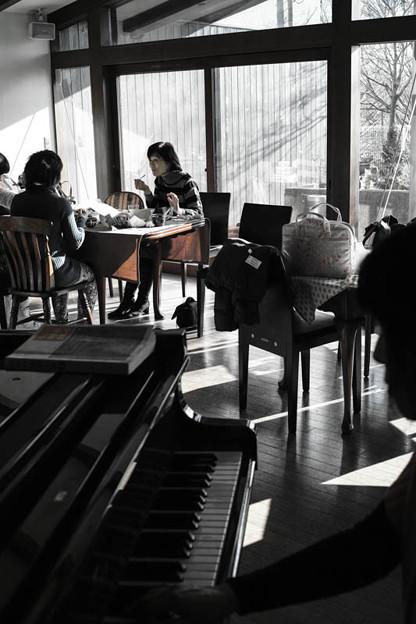 Photos: 柔らかい日差しの中で、午後のくつろぎ