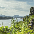 宮ヶ瀬湖の風景