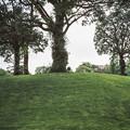 ヴァンジ彫刻庭園美術館の庭園の椅子2