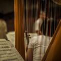 Photos: 赤い弦は音階のドの目印です