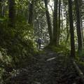 Photos: 山寺へは結構タフな坂を登りましたよ@秩父霊場巡礼の旅2013