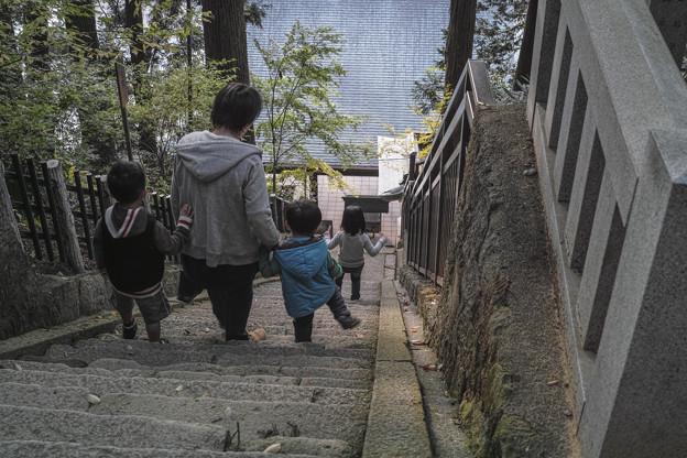 Photos: 凄い階段