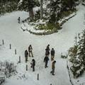 Photos: 雪だるまの大きさは