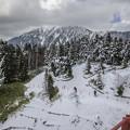 Photos: 雪だるま職人