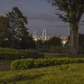 横浜山手のイギリス館の裏の薔薇園からベイブリッジをのぞむ