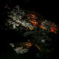 Photos: 鏡面の夜