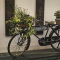 昔の自転車は今よりタフだった