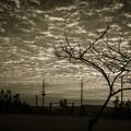 沖縄の朝焼け11@monochrome