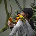 Photos: 大絶賛人気沸騰