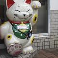 Photos: 招き猫の立像(爆)