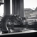 """Photos: """"火を吐く龍、自分でお湯出し、入浴中""""(爆)糞川柳"""