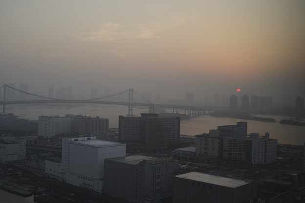 Photos: 天王洲アイルの夜明け1