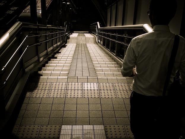 Photos: 進むべき道