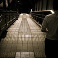 写真: 進むべき道
