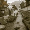 Photos: 秋の散策