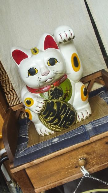 あなたは、この店に入りたくな~る、、催眠術師の招き猫(爆)