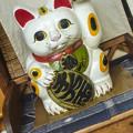 Photos: あなたは、この店に入りたくな~る、、催眠術師の招き猫(爆)