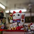 Photos: 沢山子分(子供?)引き連れている大入り招き猫