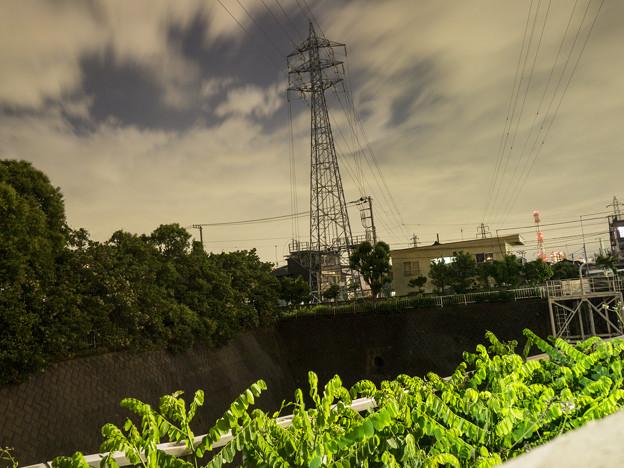 Photos: 夜景なんです