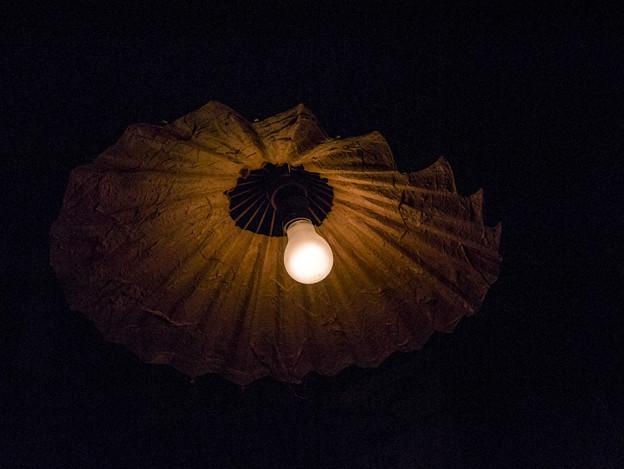 Photos: 裸電球と笠