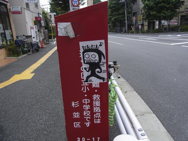 Photos: にんにん♪