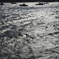 Photos: 黒光りする海面