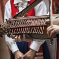 Photos: ピアノとヴァイオリンを合わせたようなシステムのニッケルハルパ