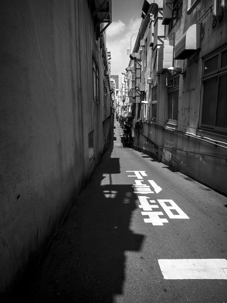 Photos: 人生を象徴する道(爆)