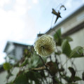 Photos: 台風の姿(爆)