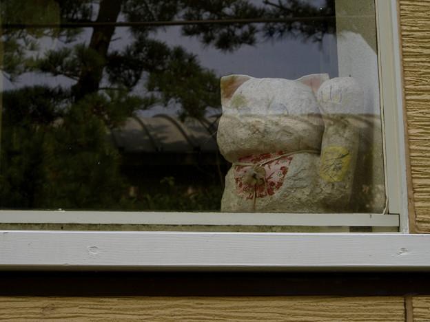 式根島で見かけた左手挙げ招き猫(爆)