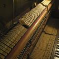 Photos: 90年前のピアノの中身