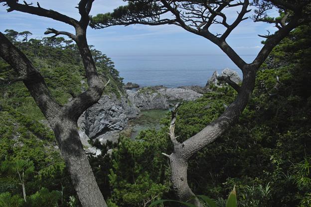 東京、式根島、吹ノ江を眼下に臨む