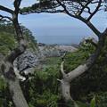 写真: 東京、式根島、吹ノ江を眼下に臨む