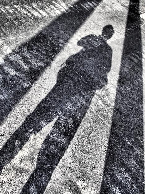 Photos: 暑いので電信柱の影に隠れていたのだが