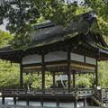 写真: 京都平野神社の神楽殿