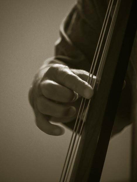写真: Bassist