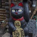 Photos: ドスのきいた左手挙げ招き猫