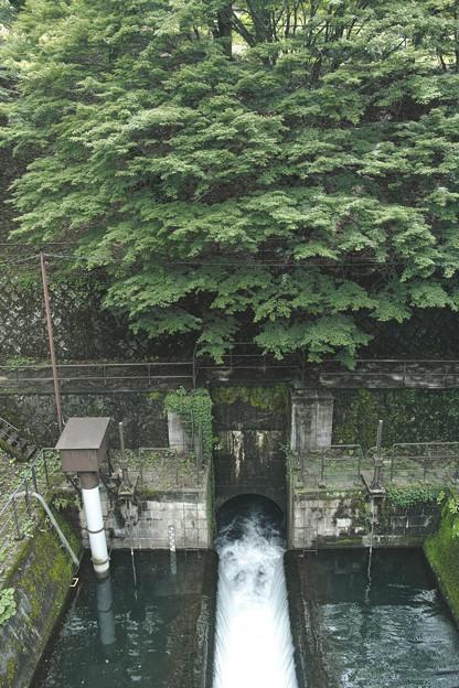 写真: 水の落下が涼しい