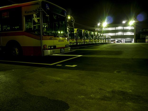 Photos: 眠るバス達