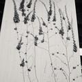 根性植物アート
