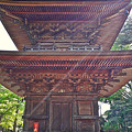 豪徳寺の三重の塔