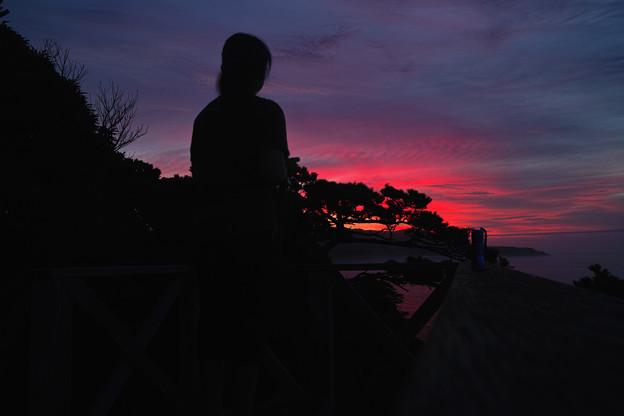 Photos: 立ち尽くす夜明け